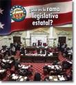 ¿Qué es la rama legislativa estatal?