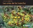 Las crías de los insectos