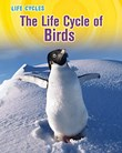 Life Cycle of Birds