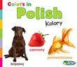 Colors in Polish: Kolory
