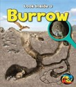Burrow: Look Inside