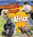 Animals in Danger in Africa