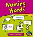 Naming Words: Nouns and Pronouns