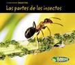 Las partes de los insectos