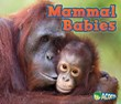 Mammal Babies