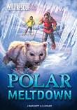 Polar Meltdown
