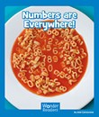 Numbers Are Everywhere