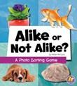 Alike or Not Alike?: A Photo Sorting Game
