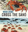 When Crabs Cross the Sand: The Christmas Island Crab Migration