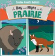 A Day and Night on the Prairie