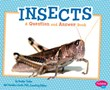 Insects: A Question and Answer Book