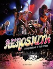 Aerosmith: Living the Rock 'n' Roll Dream