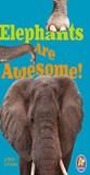 Elephants Are Awesome!