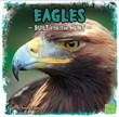 Eagles: Built for the Hunt