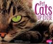 Pet Cats Up Close
