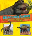 Brachiosaurus and Other Big Long-Necked Dinosaurs: The Need-to-Know Facts