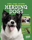 Collies, Corgies, and Other Herding Dogs