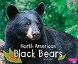 North American Black Bears