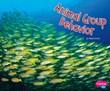Animal Group Behavior