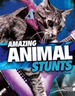 Amazing Animal Stunts