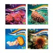 Faceless, Spineless, and Brainless Ocean Animals
