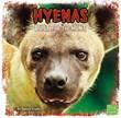 Hyenas: Built for the Hunt
