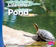 Life in a Pond