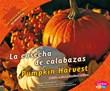 La cosecha de calabazas/Pumpkin Harvest