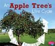 An Apple Tree's Life Cycle