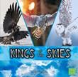 Kings of the Skies