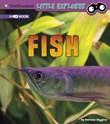 Fish: A 4D Book
