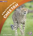 A Day in the Life of a Cheetah: A 4D Book