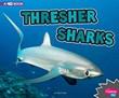 Thresher Sharks: A 4D Book