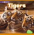 Tigers: A 4D Book