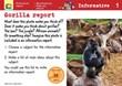 Gorilla report