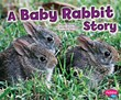 A Baby Rabbit Story