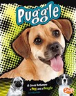 Puggle: A Cross Between a Pug and a Beagle