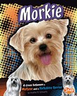 Morkie: A Cross Between a Maltese and a Yorkshire Terrier