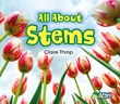 All About Stems