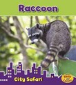 Raccoon: City Safari