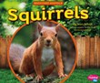 Squirrels