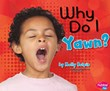 Why Do I Yawn?
