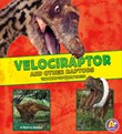 Velociraptor and Other Raptors: The Need-to-Know Facts