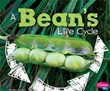 A Bean's Life Cycle