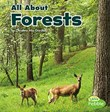 All About Forests