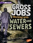 Gross Jobs Working with Water and Sewers