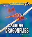 Dashing Dragonflies: A 4D Book