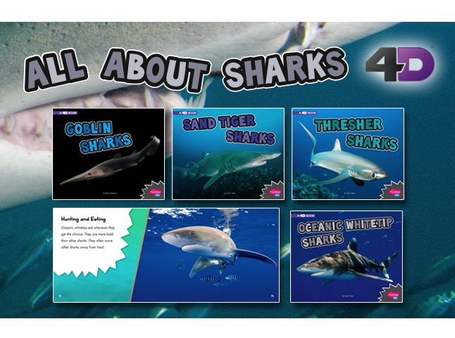 All About Sharks 4D