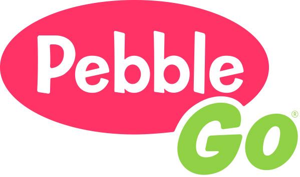 Image result for pebblego