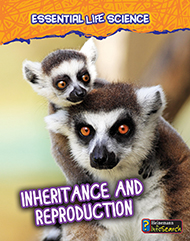 Inheritance & Reproduction image